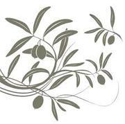 Оливки & Оливковое масло от производителя,  Греция